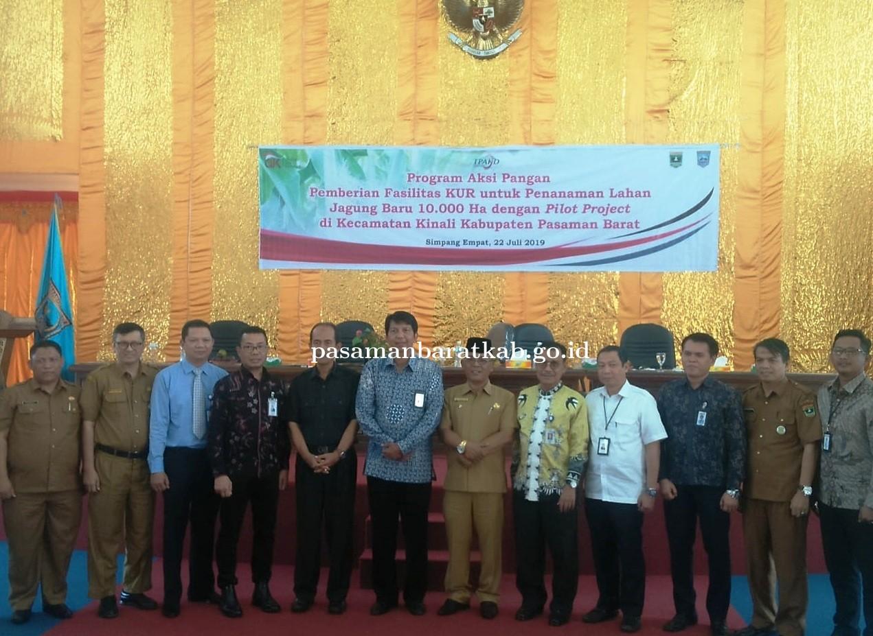 10 Ribu Ha Lahan Jagung Di Kecamatan Kinali Pasbar Pilot Projects TPAKD